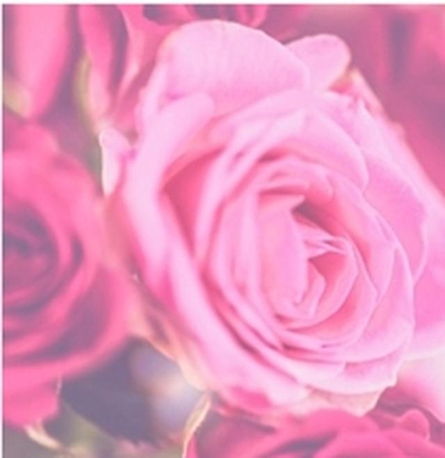 画像: French Rose 大人の色気のあるフレンチローズ。女性本来の魅力が解き放たれるような香り。 ※とてもしっとりした使用感