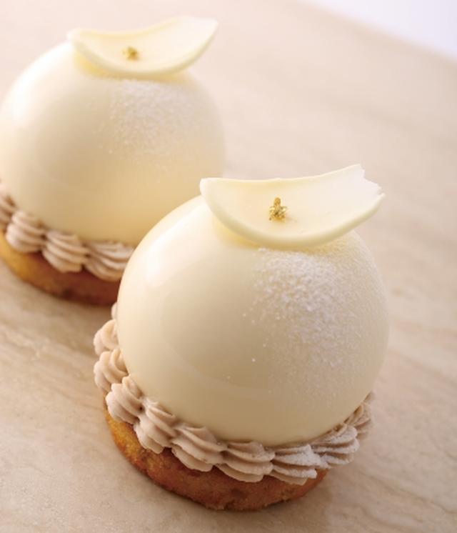 画像3: 秋の新作デセール!「アンテノール」8店舗だけのこだわりケーキを限定発売