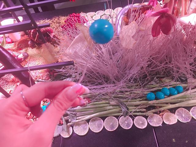画像: 実は、この青いもの食べれるんです! 正体は、うずらの卵だそう。着色料をつかっていないので、体にも優しいですよね。