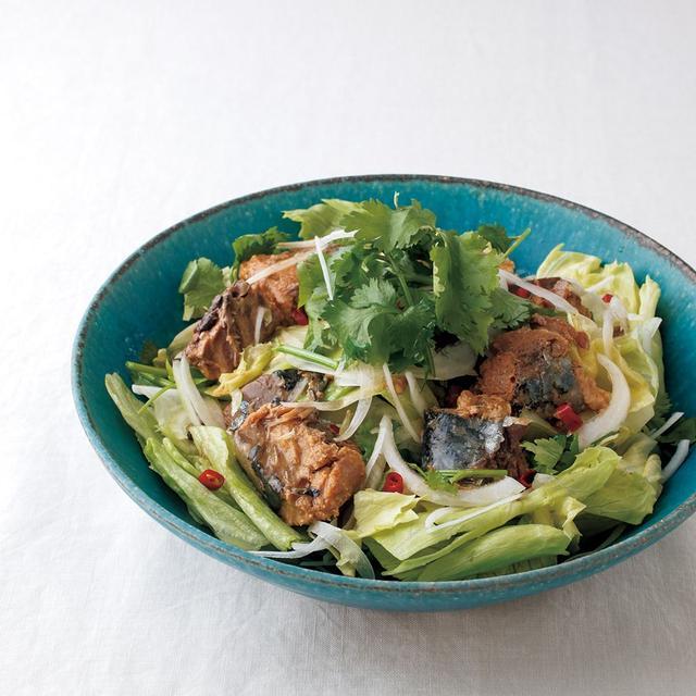 画像6: 鯖の水煮、みそ煮、煮つけ(しょうゆ味)で絶品おつまみ 掲載レシピの一例