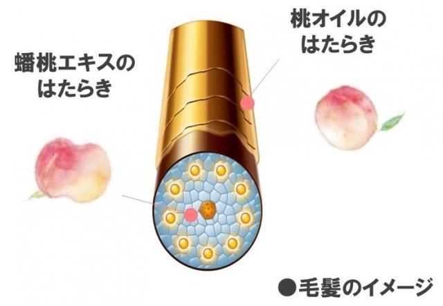 画像3: 「蟠桃」から抽出したエキスと「桃オイル」を配合したアウトバストリートメントが新発売!