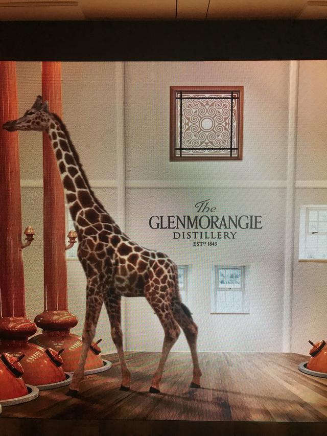 """画像4: 六本木ヒルズアリーナ2日間限定、ジャズを聴きながらウィスキーを堪能できる!""""グレンモーレンジィハウス"""""""