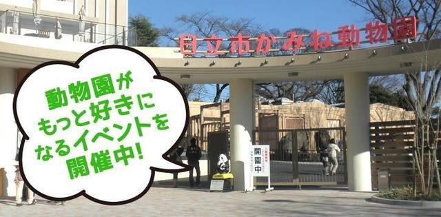 画像: 日立市かみね動物園公式ホームページ