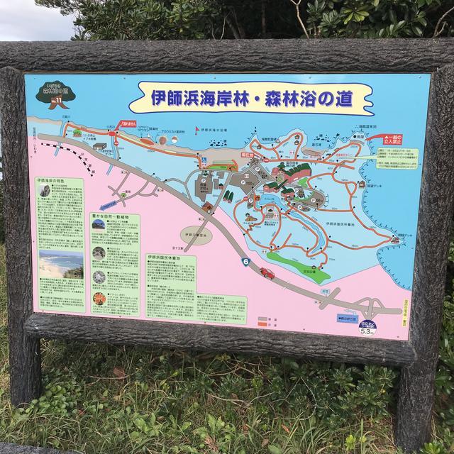 画像: ここで「ウミウ」をとってます! 日立市の「鵜の岬」