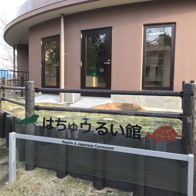画像5: 【体験レポ】ウミウと爬虫類がいっぱい❤︎日立市かみね動物園「はちゅウるい館」がオープン!
