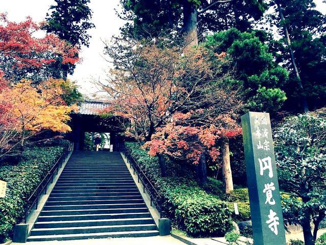 画像1: 北鎌倉から徒歩2分