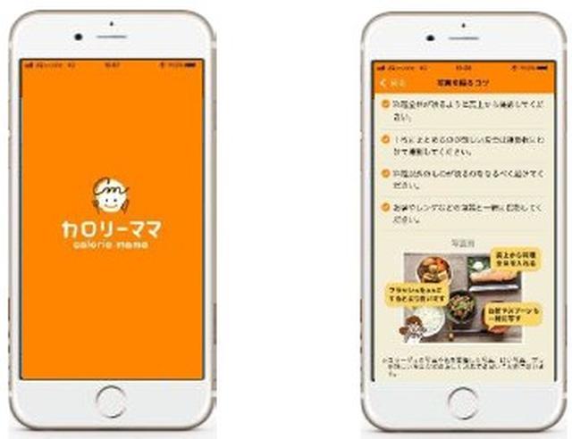 画像2: 【カロリーママ】日本初の機能、食事写真からAIが食材・食事量・糖質量を解析してくれる!