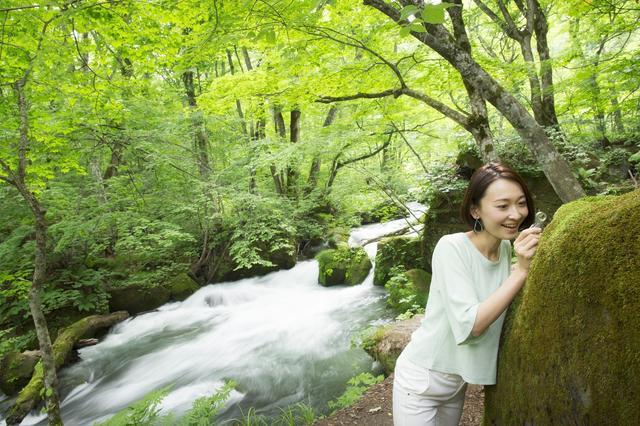 画像1: 【星野リゾート】奥入瀬渓流ホテル 苔づくしの宿泊プラン「苔ガールステイ」