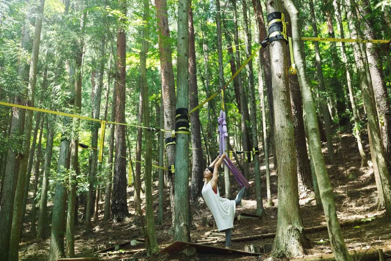 画像: 新緑の森で身体のリズムを整える 「春の森グランピングリトリート」プログラム