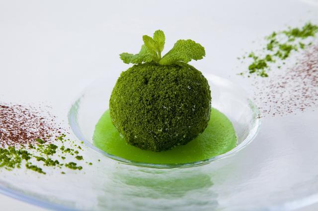 画像7: 4つの体験を通して苔の魅力を満喫できる宿泊プラン