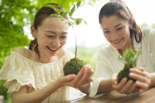 画像8: 4つの体験を通して苔の魅力を満喫できる宿泊プラン