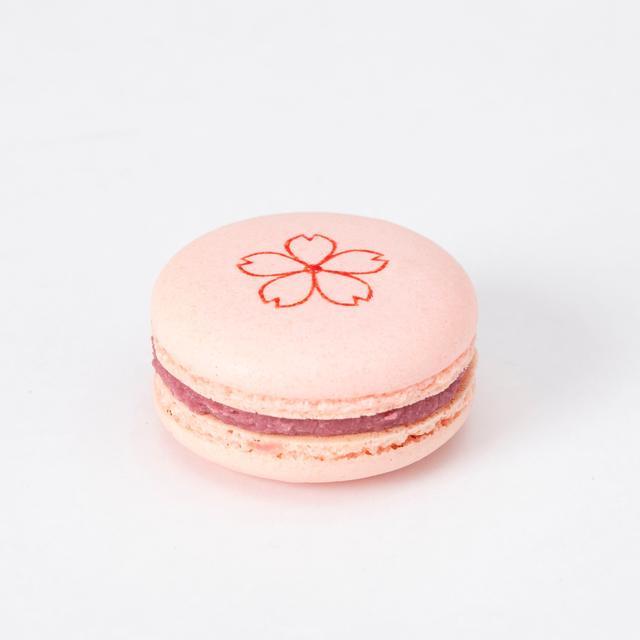 画像4: リンツ ショコラ カフェ、春限定の桜メニューが続々登場!