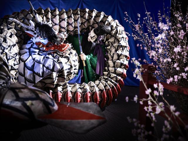 画像3: 界 出雲(島根県・玉造温泉 ) 島根の夜桜と文化を堪能する旅