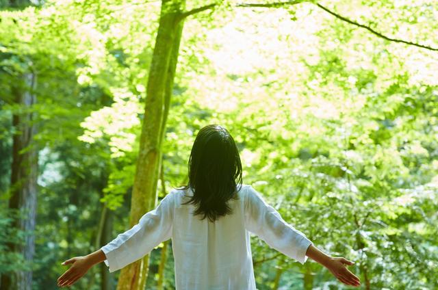 画像2: 【星のや富士】涼しい森の中でアクティブに避暑を楽しむ 「夏の森グランピングリトリート」