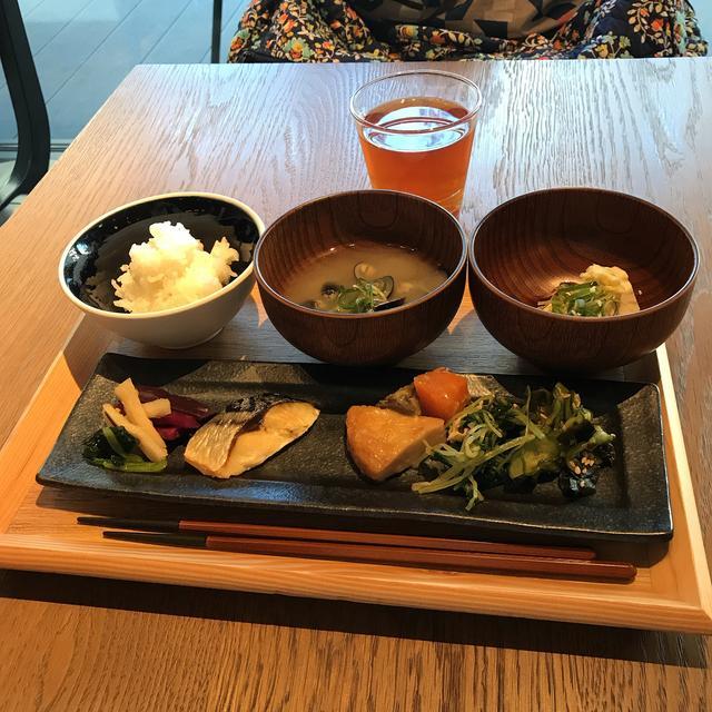 画像1: 【体験レポ】「そうだ 京都、行こう。」苔と新緑&京の涼めぐり 後編〜苔と新緑編〜