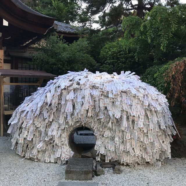 画像1: 【体験レポ】「そうだ 京都、行こう。」苔と新緑&京の涼めぐり 前編~京の涼巡り編