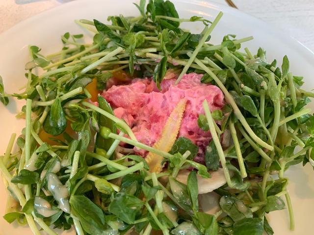 画像2: 豆苗は食べ放題!豚しゃぶと彩り野菜の豆苗サラダ~豆苗味噌ドレッシング~
