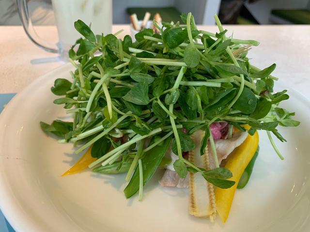 画像1: 豆苗は食べ放題!豚しゃぶと彩り野菜の豆苗サラダ~豆苗味噌ドレッシング~