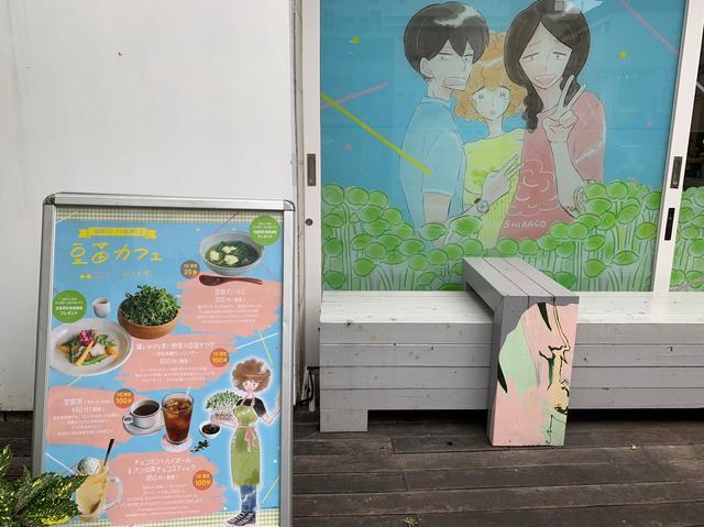 画像1: 代官山駅を出てすぐ!豆苗で彩られたSIGN ALLDAY
