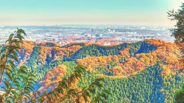 画像: 山の日にハイキングを楽しめる国内の旅行先7選