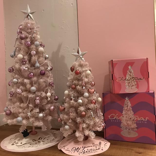 画像: どれにする?いろいろ選べるクリスマスツリー