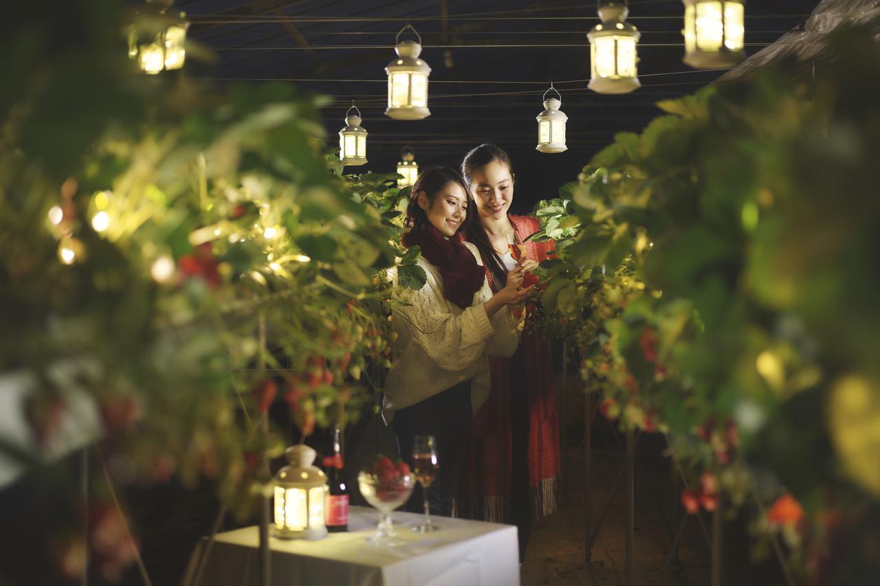 画像: 【星野リゾート】リゾナーレ熱海 静岡生まれのいちご「紅ほっぺ」を堪能するプログラム 「ナイトストロベリーツアー ~究極の紅ほっぺに出会ういちご一会編~」開催