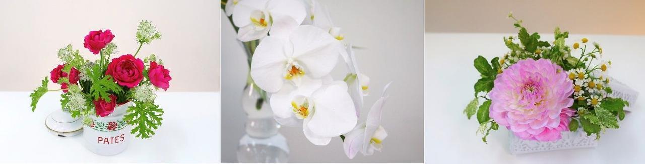 画像3: 自宅で有名クリエイターの教室に通う感覚で花を活ける! レッスン動画+花を定期配送する サブスクリプションサービス「hanaike」提供スタート