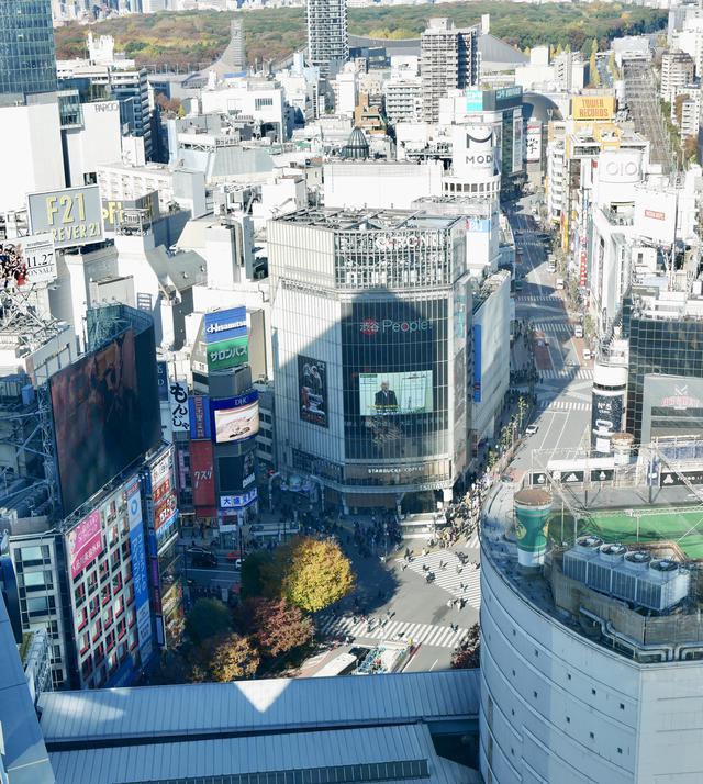 画像13: 12月5日オープン!渋谷フクラス