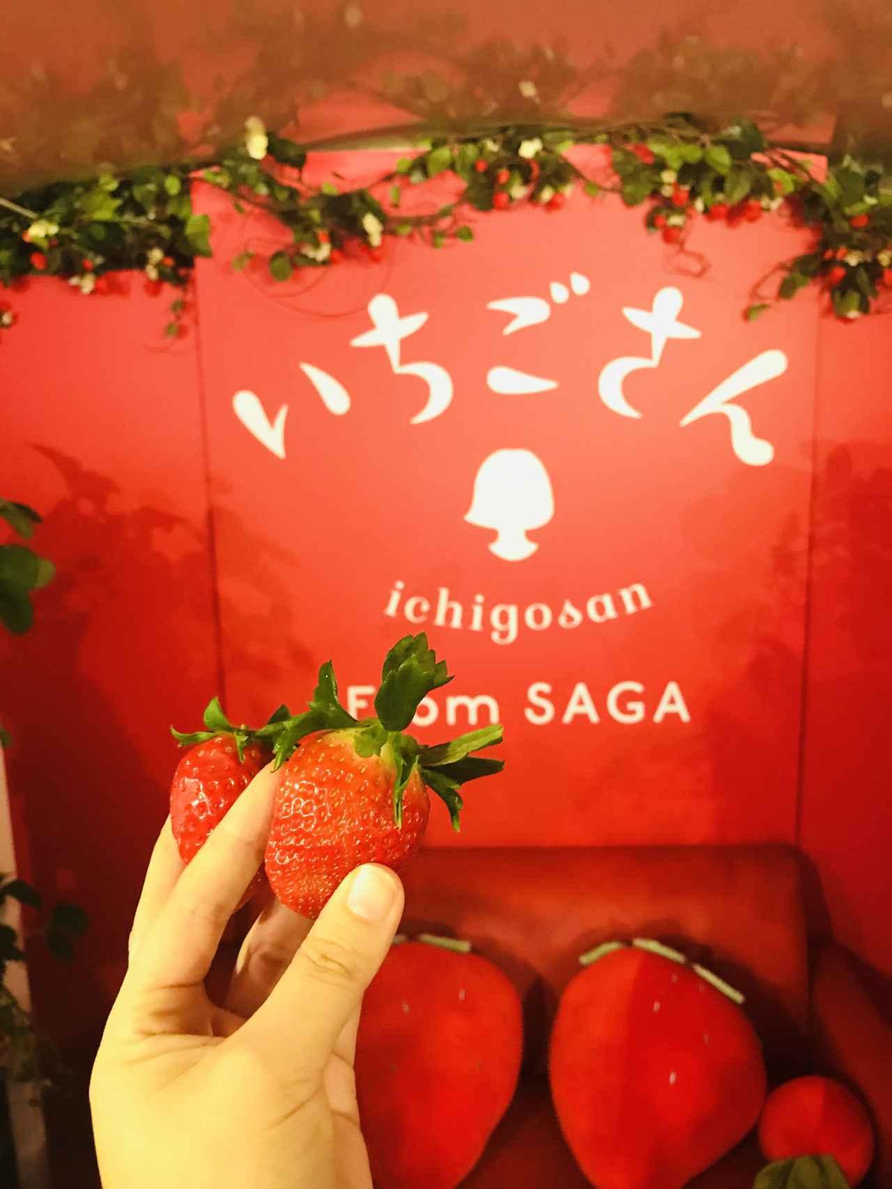 Images : 1番目の画像 - 「【試食レポ】佐賀県の新しいブランドいちご「いちごさん」を食べながら都内を巡る「いちごさんバス」運行!」のアルバム - カワコレメディア | 最新トレンド・コスメ・スイーツなど女の子のためのガールズメディアです!