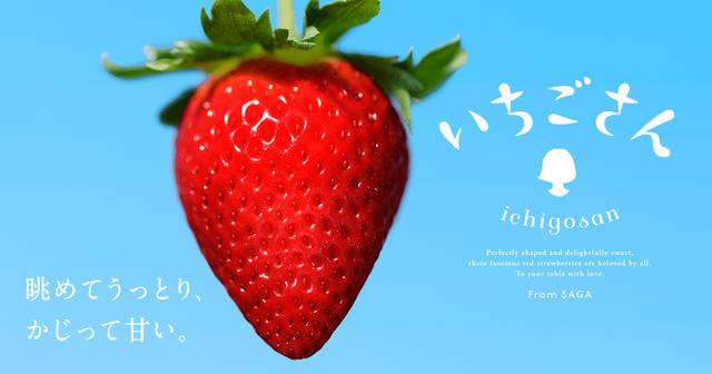 画像: いちごさん - 眺めてうっとり、かじって甘い。佐賀県産いちご