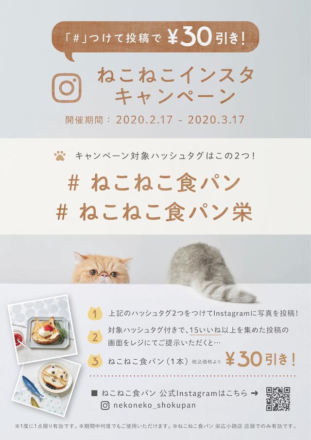 画像4: ねこの形の高級食パン専門店「ねこねこ食パン」が名古屋・栄にオープン