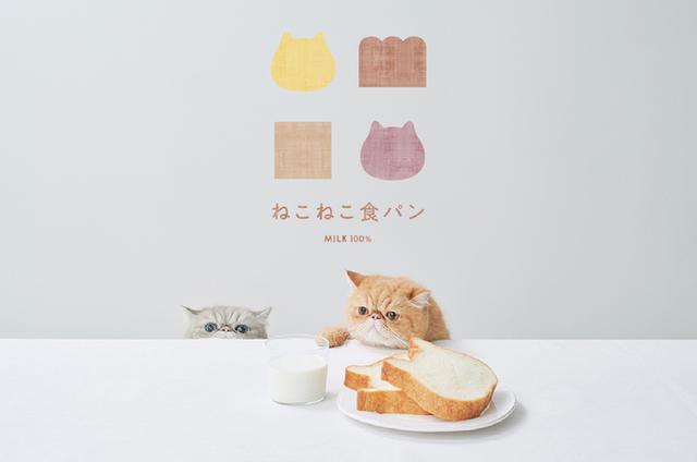 画像1: ねこの形の高級食パン専門店「ねこねこ食パン」が名古屋・栄にオープン