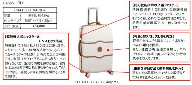 画像4: 【日本本格上陸】ヨーロッパで最も売れているフランスの老舗スーツケースブランド『DELSEY』