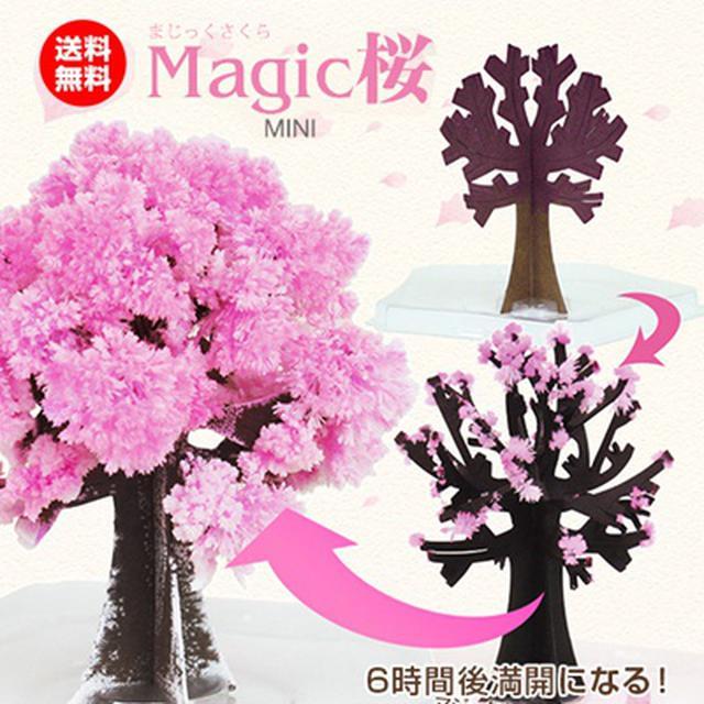 画像: [Qoo10] マジック桜 : 家具・インテリア