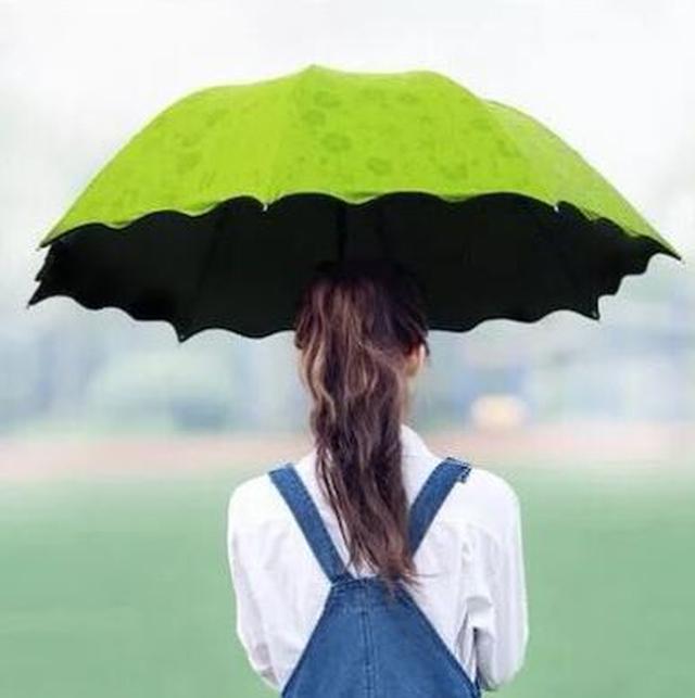 画像4: 梅雨シーズン到来!おすすめ晴雨兼用傘