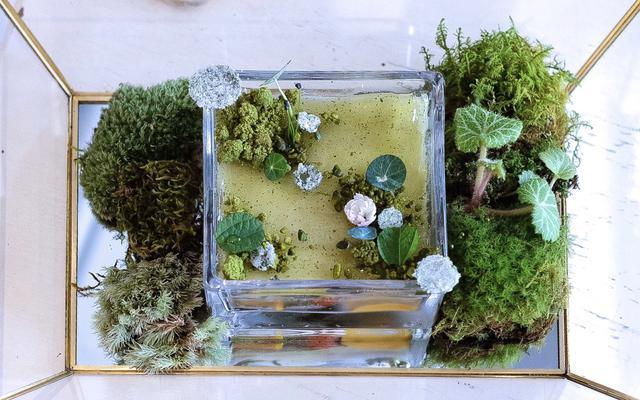 画像: 『L'atelier à ma façon(ラトリエ ア マ ファソン)』からは〈Giverny〉ジヴェルニー。モネが晩年過ごした自宅池とその睡蓮を模したパフェ。