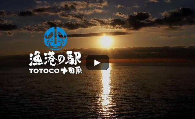 画像: 漁港の駅 TOTOCO小田原