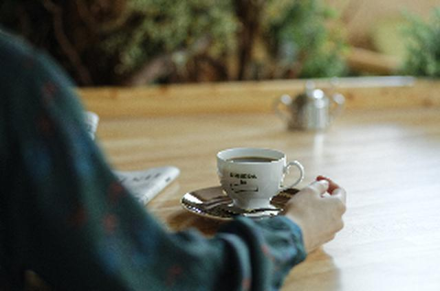 画像6: 【試食レポ】プラントベース(植物由来)100%メニュー!地球とくつろぐ喫茶店『KOMEDA is □ 東銀座店』がオープン♡