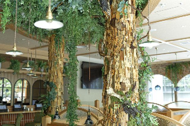 画像2: 【試食レポ】プラントベース(植物由来)100%メニュー!地球とくつろぐ喫茶店『KOMEDA is □ 東銀座店』がオープン♡
