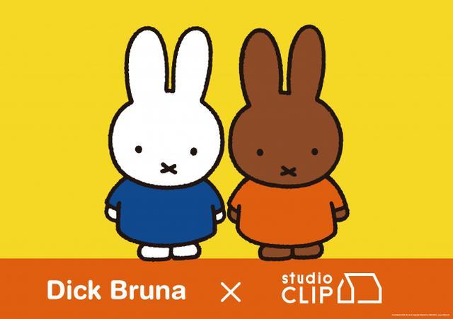 画像1: 大反響を呼んだDick Bruna×studio CLIPコラボ待望の新作が発売スタート