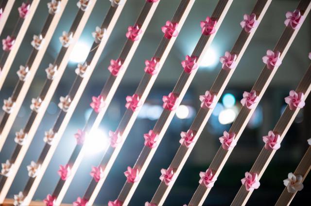 画像3: 真夏の桜が、失われた春を取り戻す約20メートル!5,000個の桜かざぐるまが並ぶ「SAKURA KAZAGURUMA-WALL」那須ガーデンアウトレットに期間限定で登場!