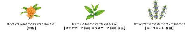 画像: ●主な植物成分 <参考資料> ※ハンドクリームのみ