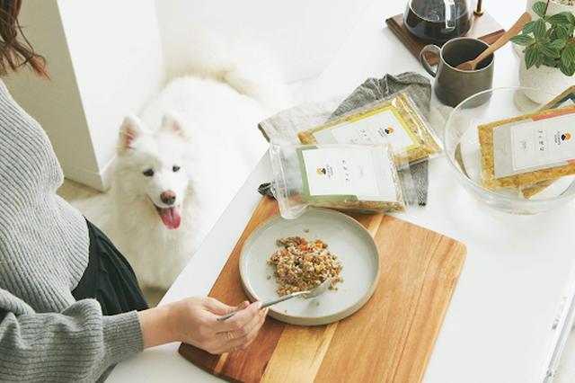 画像: D2Cドッグフードブランド『PETOKOTO FOODS』、日本初上陸の体験型店舗「b8ta」に出店