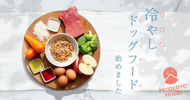 画像5: 次世代のドッグフード「PETOKOTO FOODS」