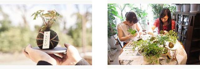 画像: 【京都】花工房オリジナル「生命花手毬(せいめいはなてまり)」コロンと可愛い自分だけの苔玉(こけだま)作り体験♪