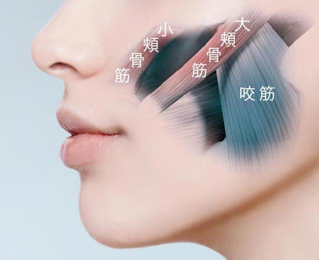 画像7: 「YA-MAN TOKYO JAPAN 」2020 秋冬新製品を一挙紹介!