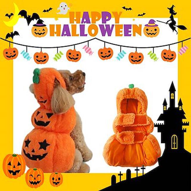 画像: [Qoo10] 犬 ハロウィン コスチューム かぼちゃ ... : ペット