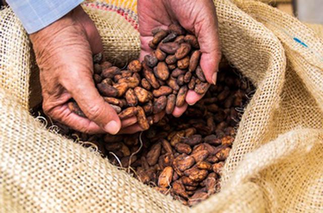 画像3: 【試食レポ】あふれるカカオの香り‥♡「ファミリーマート」よりBean to bar chocolateを使ったチョコレートスイーツ新登場!