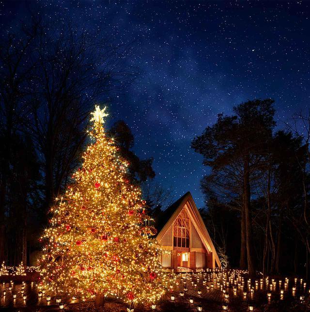 """画像1: のんびりクリスマスには""""軽井沢""""がぴったり!"""