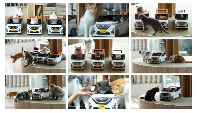 画像2: ねこ用日産軽自動車「にゃっさんデイズ」×猫カフェ「MOCHA」がコラボ